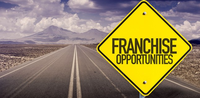 visa-franchise-opportunities