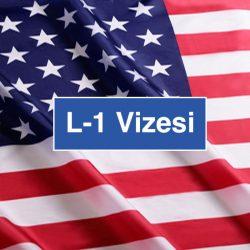 l1-vizesi-usa
