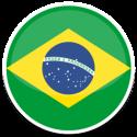 visafranchise-brazil-round-flag