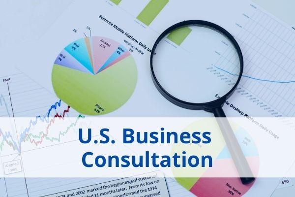 US Business Consultation