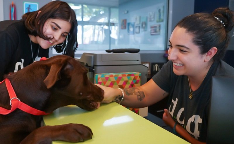 DOG HOTELS EB-5 Green Card opportunity